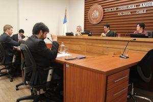 Aprobaron conciliación entre Municipio de Pucón y particular en demanda por daño ambiental